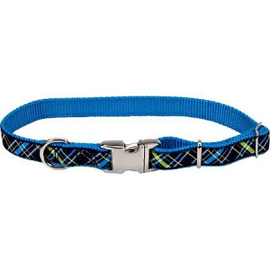 Coastal Pet Attire Ribbon Adjustable Nylon Collar 12
