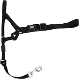Coastal Walk 'n Train Dog Head Halter Black