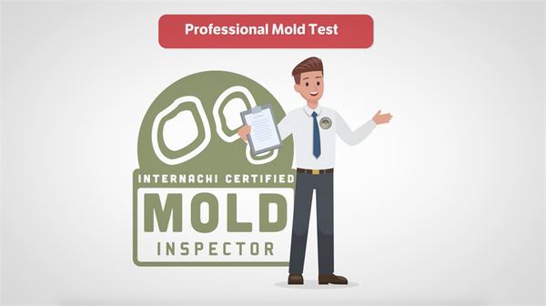 Custom-Branded Mold Testing Video (USA)