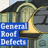 InterNACHI General Roof Defects Audiobook