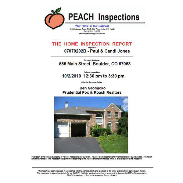 Sample Inspection Reports from Ben Gromicko