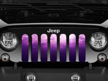 Ladies Night Purple & Pink Glitter Storm Grille Insert