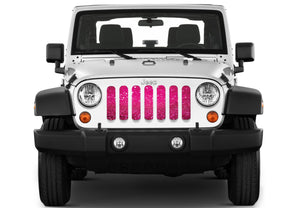 Bright Pink Fleck Print Grille Insert