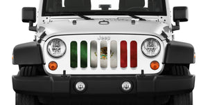 Rustic Mexico Flag Grille Insert