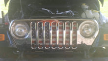 Dirty Grace Grille Insert