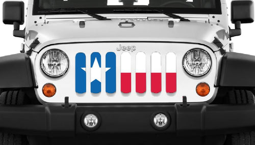 Texas State Flag Grille Insert