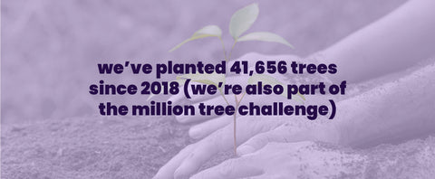 sheets & giggles has planted over 40,000 trees and counting