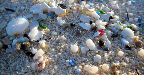 microplastics from polyester are ubiquitous