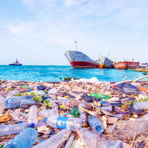 THE CONSEQUENCES OF OCEAN PLASTIC POLLUTION