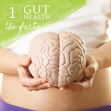 Gut Health - The Facts