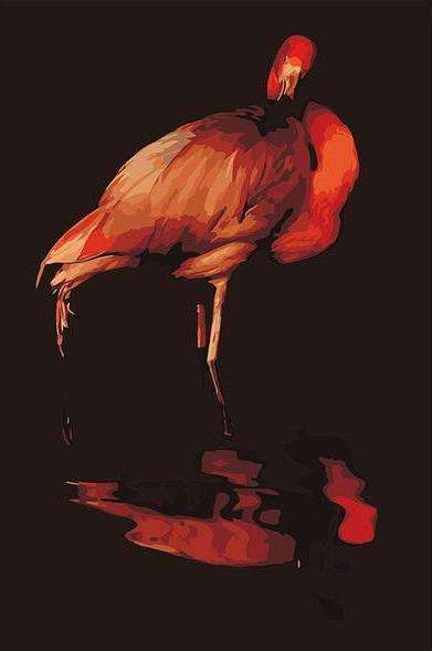 Black Flamingo looking at the water mirror - Paint by Numbers Kits for Adults DIY