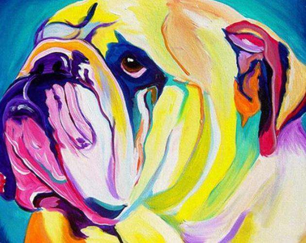 Colorful Bulldog - Paint by Numbers Kits for Adults DIY - Paint by Numbers for Adults