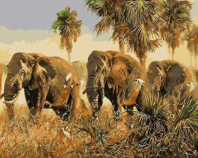 Elephants - Paint by Numbers Kits for Adults DIY