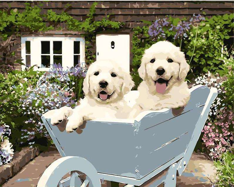 Puppies on the Pushcart - Paint by Numbers Kits for Adults DIY