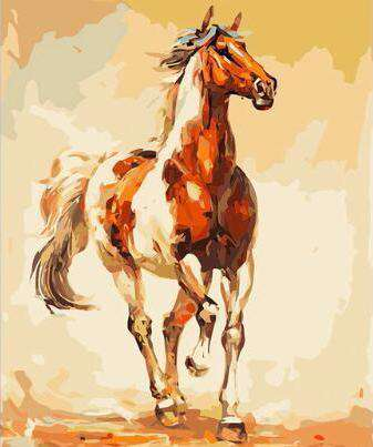 Skewbald Horse - Paint by Numbers Kits for Adults DIY