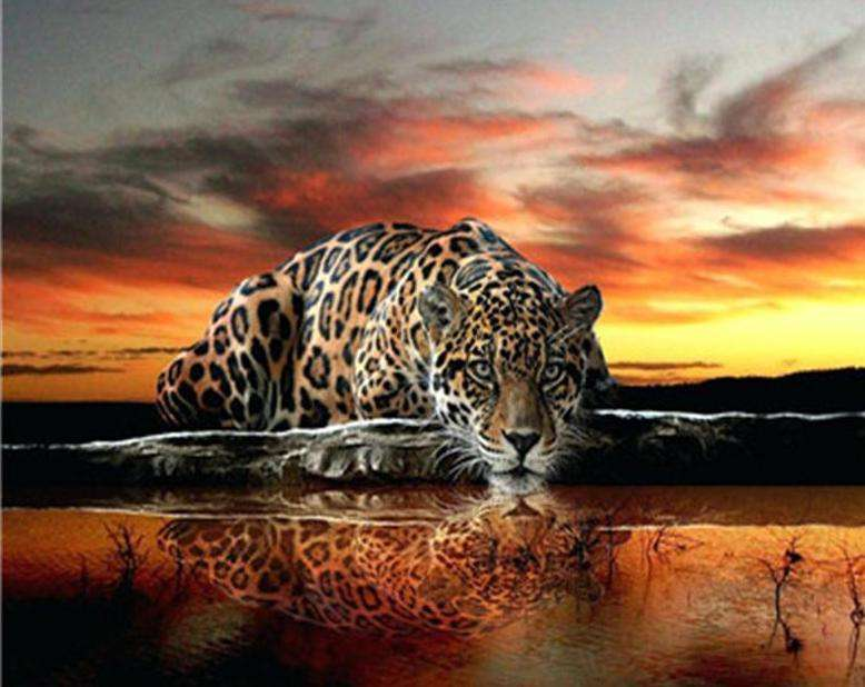Sunset Savannah Leopard - Paint by Numbers Kits for Adults DIY - Paint by Numbers for Adults