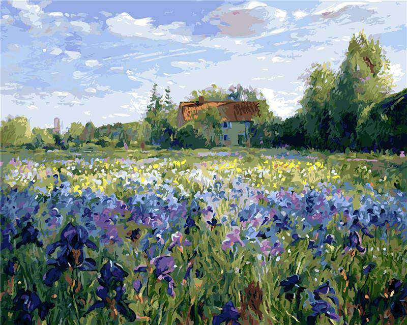 Timothy Easton Evening at the Iris Field - Paint by Numbers Kits for Adults DIY - Paint by Numbers for Adults