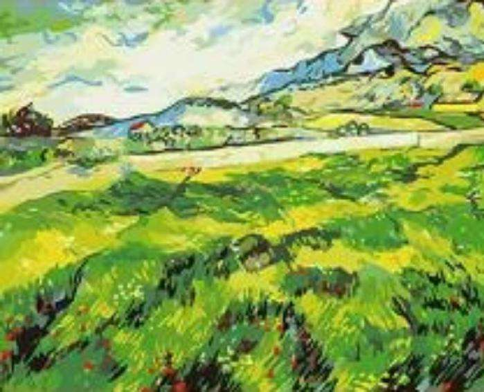 Van Gogh Green Wheat Field - Paint by Numbers Kits for Adults DIY