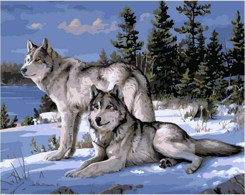 Wolves in the Snow - Paint by Numbers Kits for Adults DIY - Paint by Numbers for Adults