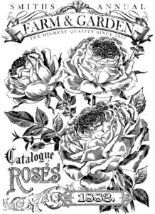 Catalogue of Roses | Paintable Transfer | IOD