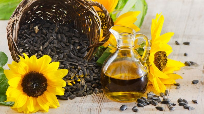 sunflower oil for skin