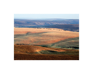 mark feiden matted photograph flint hills kansas