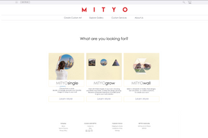MITYO Web Developer (SDE) Internship July 2018