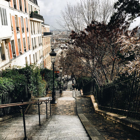 An Alley in Paris by S Ramgarhia