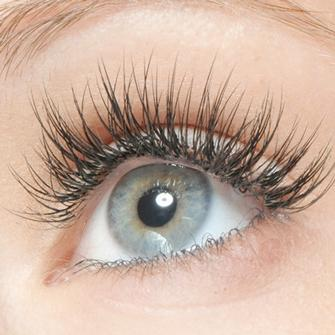 Full Set of Lashes plus your First Fill In