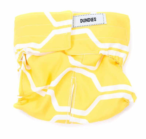 Dundies Pineapple (Limited Edition) - All In One Nappy