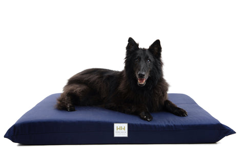 Orthopedic Pet Beds - Navy