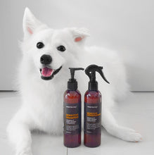 Sensitive Dog Conditioner: Chamomile, Sweet Orange & Rosewood