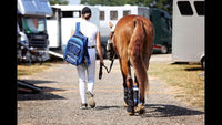 Cryochaps - Awarding winning Equine Ice Wraps
