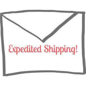 Expedited Shipping - Holistic Bear