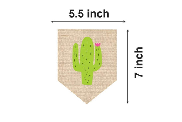 Mexican cactus themed party supplies | taco and birthday parties