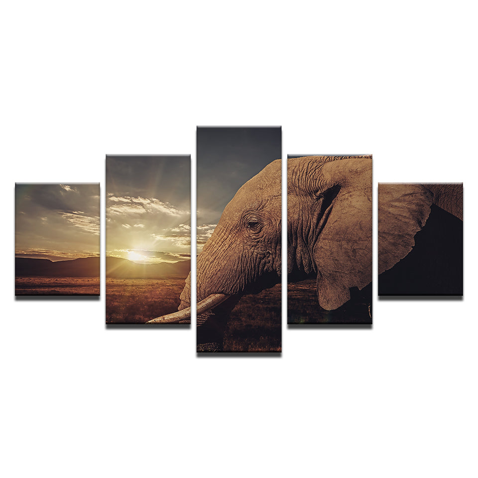 Sunset With Elephant Five Piece Canvas