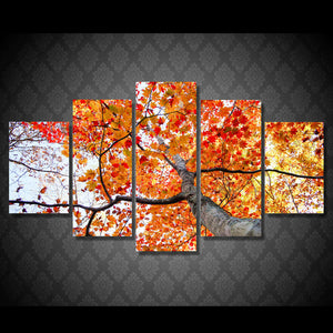 Maple Tree In Fall Five Piece Canvas