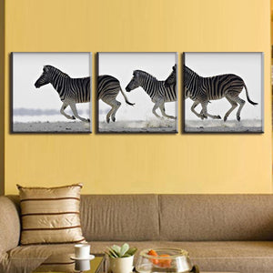 Marching Zebras Three Piece Canvas