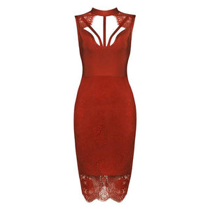Sexy Hollow Out Backless Lace Bodycon Party Dress