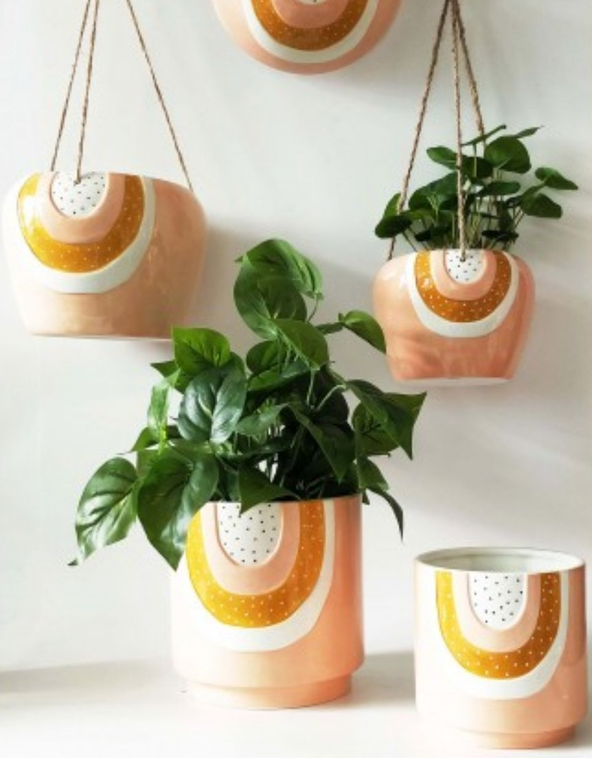 Plant Obsessed Pot and Planters