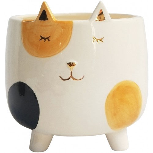 Ginger Cat Planter Pot On Legs 11cm