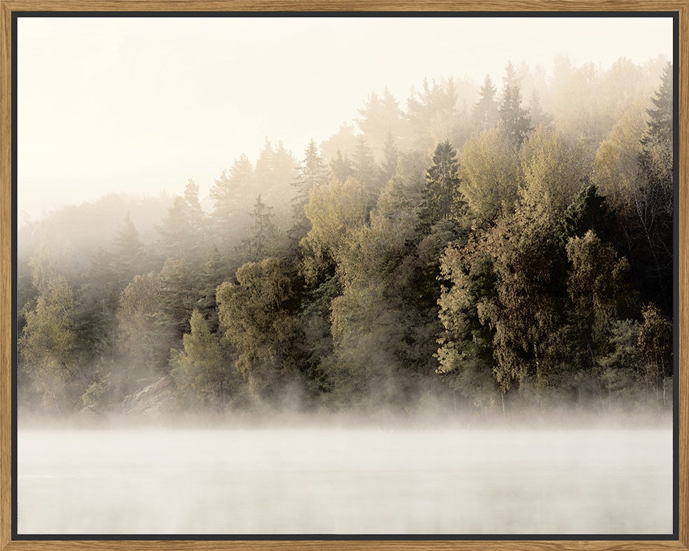 Floating Frame - Misty Timberline - 100x80