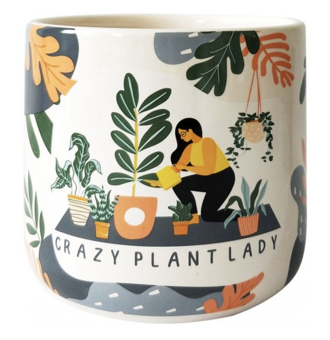 Crazy Plant Lady Planter Blue & Terracotta Medium 13cm