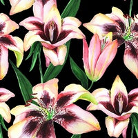 Canvas Print - Blushing Lilies - 100x100