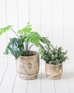 Pot/Planter - Jabiru Timber White Wash Set of 2 - 19/13cm