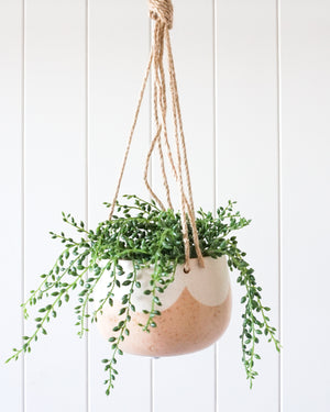 Hanging Crete Pot Planter