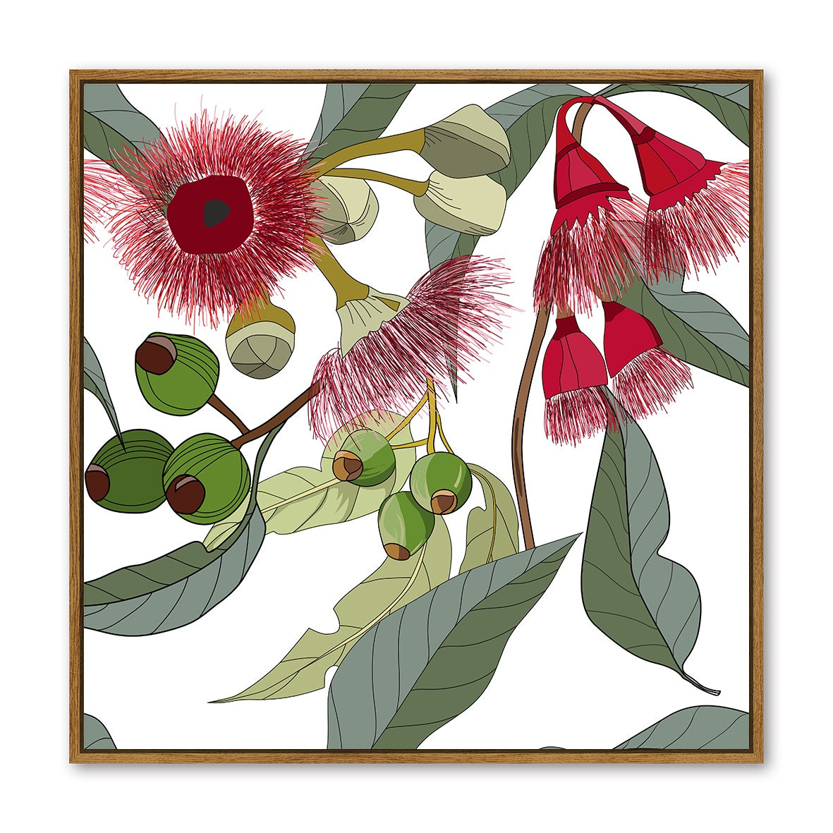 Floating Frame - Flowering Gum White - 100x100