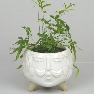 Bellamy Planter White