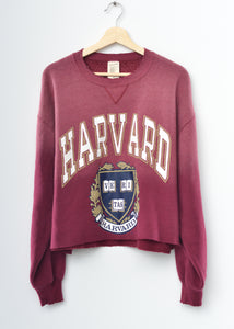 Harvard Crop Sweatshirt
