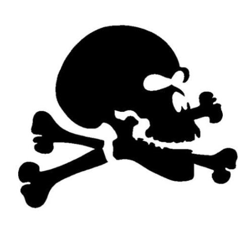 TAG Jolly Roger Glitter Tattoo Stencil